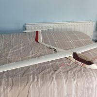DG-100 2.1M Glider.